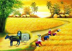 Màn cuốn in tranh làng quê